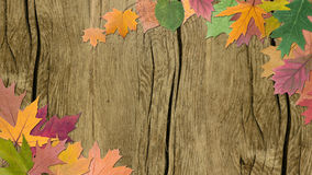 Autumn leaves with wood Stock Photography