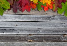 Autumn leaves wooden background stock photos