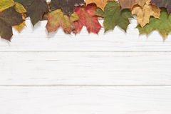 Autumn leaves. Autumn wooden background with leaves Stock Photo
