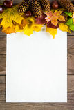 Autumn leaves Royalty Free Stock Images