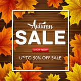 Autumn leaves on wooden background. Illustration of Autumn leaves on wooden background Royalty Free Stock Image
