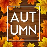 Autumn leaves on wooden background. Illustration of Autumn leaves on wooden background Royalty Free Stock Photos