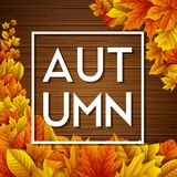 Autumn leaves on wooden background. Illustration of Autumn leaves on wooden background Stock Image