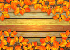 Autumn leaves with wooden background Royalty Free Stock Photography