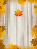 Autumn leaves on wooden background. plus EPS10 Stock Photos