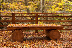Autumn leaves on wooden benches Royalty Free Stock Photography