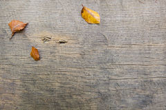 Autumn leaves on a wooden board Stock Photo