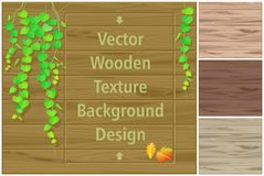 Autumn leaves on a wooden board and different shades of wooden textures. Vines growing on a wooden board with several options for background Stock Photos