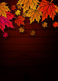 Autumn leaves on wooden boards Stock Images