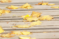 Autumn leaves on a wooden bridge Royalty Free Stock Photos
