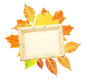 Autumn leaves and wooden frame Stock Image