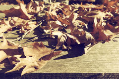 Autumn leaves on a wooden surface (soft focus). Cross processed Stock Images