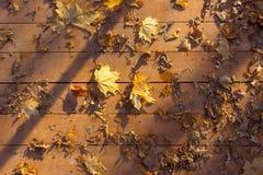 Autumn leaves on wooden surface Stock Photo