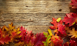 Autumn leaves on a wooden table. Stock Photography