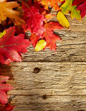 Autumn leaves on a wooden table. Royalty Free Stock Images