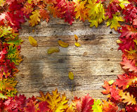 Autumn leaves on a wooden table. Stock Photos