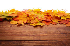 Autumn leaves on wooden table. Stock Images