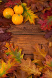 Autumn leaves on the wooden table. Autumn leaves on the natural wooden table Royalty Free Stock Image