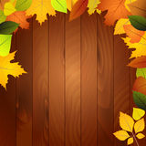 Autumn leaves on a wooden wall Royalty Free Stock Images
