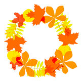 Autumn leaves wreath, in vector.  Royalty Free Stock Photo