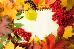 Autumn leaves and writing-book Royalty Free Stock Photos