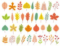 Autumn leaves. Yellow autumnal garden leaf, red fall leaf and fallen dry leaves flat vector set