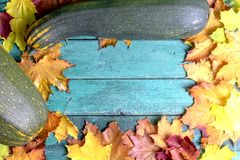 Autumn leaves and yellow and green zucchini on green blue wooden background with copy space stock photos