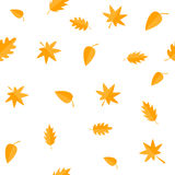 Autumn leaves. Yellow orange leaf set. Oak, maple, birch, rowan. Seamless Pattern Wrapping paper, textile template. White backgrou Royalty Free Stock Photos