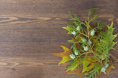 Autumn leaves yellowed wooden background close up Royalty Free Stock Images