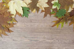 Autumn leaves yellowed wooden background close up Royalty Free Stock Photography