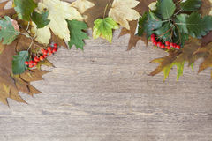 Autumn leaves yellowed wooden background close up Royalty Free Stock Photos