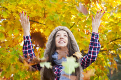 Autumn leaves royalty free stock photography