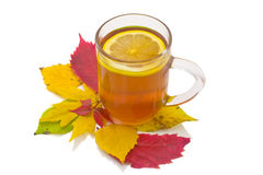 Autumn lemon tea Royalty Free Stock Photos