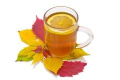 Autumn lemon tea. Transparent cup of tea with a lemon costs on autumn leaves Royalty Free Stock Photos
