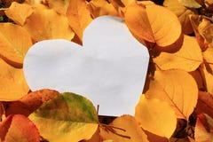 Autumn letter Stock Images