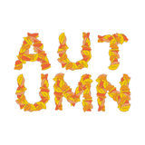 Autumn Lettering Folhas do amarelo de ABC alfabeto outonal Imagens de Stock Royalty Free