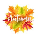 Autumn lettering illustration Stock Photo