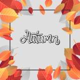 Autumn Lettering Tipografia escrita mão no fundo branco Ilustração do vetor para sua água fresca de design imagens de stock royalty free
