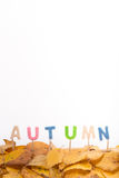 Autumn letters. Autumn leaves decoration buidling the word autumn in fun colored letters Stock Photography