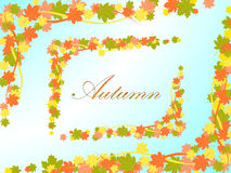 Autumn light blue background with a frame in the form of colored maple leaves and lines Stock Photo