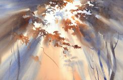 Free Autumn Light In The Forest Watercolor Landscape Royalty Free Stock Image - 104687846