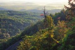 Autumn Light på berget Arkivbild