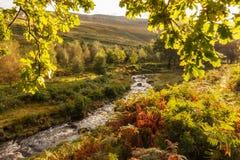 Autumn Light Stream Peak District Regno Unito Fotografia Stock
