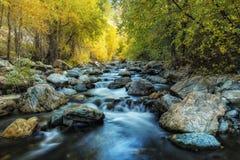 Autumn Light sul fiume Immagini Stock Libere da Diritti