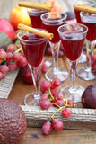 Autumn liqueur Royalty Free Stock Photography