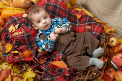 Autumn little boy lie on plaid blanket, yellow fall leaves, apples, pumpkin and decoration on textile Royalty Free Stock Photography
