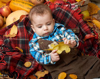 Autumn little boy lie on plaid blanket, yellow fall leaves, apples, pumpkin and decoration on textile Stock Photos
