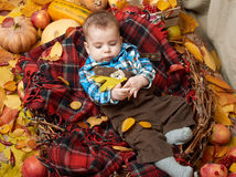 Autumn little boy lie on plaid blanket, yellow fall leaves, apples, pumpkin and decoration on textile Stock Photography