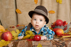 Autumn little child boy lie on yellow fall leaves, apples, pumpkin and decoration on textile stock images