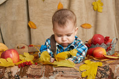Autumn little child boy lie on yellow fall leaves, apples, pumpkin and decoration on textile stock photo